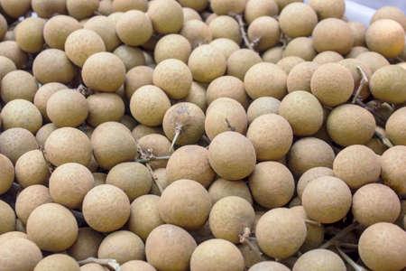 l agriculture: Asian fruit Longan Stock Photo