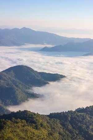 chiangrai: Sea of mist at Doi Pha Tang, Chiangrai , Thailand