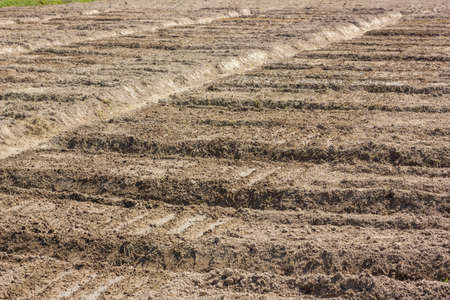 ploughed: Ploughed Farmland Stock Photo