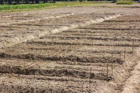 agri: Ploughed Farmland Stock Photo