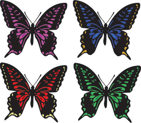 Four butterflies of different colors isolated on white