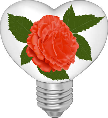 Bulb in the form of heart and in it a red rose on a white background