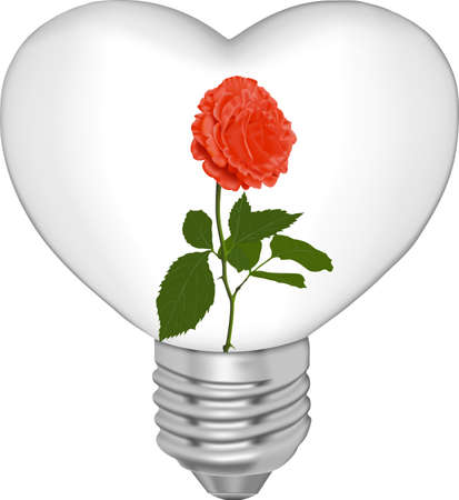 Bulb in the form of heart and in it a flower on a white background  Illustration
