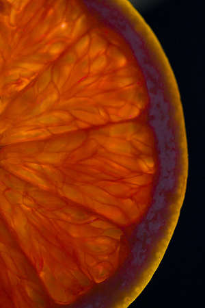 Macro shot of a slice of pink grapefruit, backlit to emphasize veins and patterns -- isolated on black background.