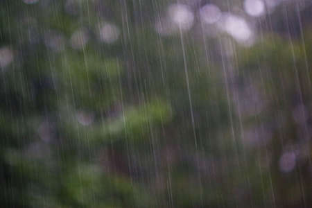 Abstract shot of heavy rain with background of greens and soft magentas.