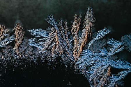 Macro shot of intricate ice crystal designs on frosty window.