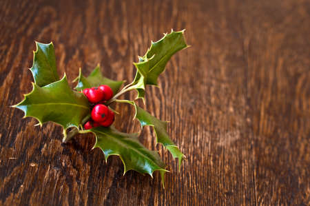Branch of holly on wood background photo