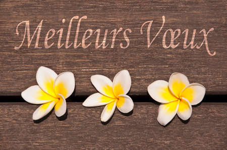 best wishes: Meilleurs voeux, meaning best wishes in French, on wood and plumeria flowers Stock Photo