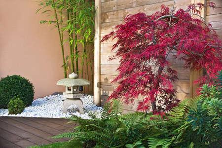 Red japanese maple tree in a zen garden photo