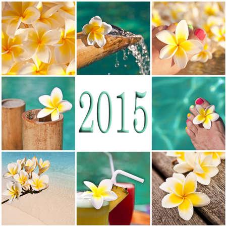 2015, swimming pool and plumeria collage photo
