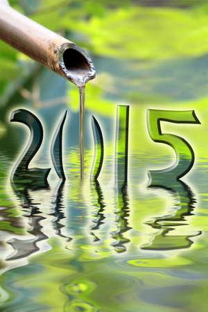 japones bambu: 2015, bamb� japon�s fuente de agua y reflexiones