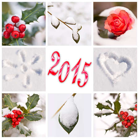 winter photos: 2015, snow and winter red and white photos collage