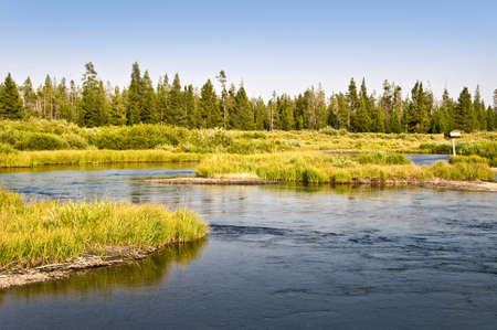west river: Madison river near West Yellowstone, Montana, USA
