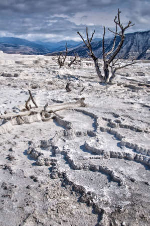 Mammoth hot springs in Yellowstone National Park, USA photo