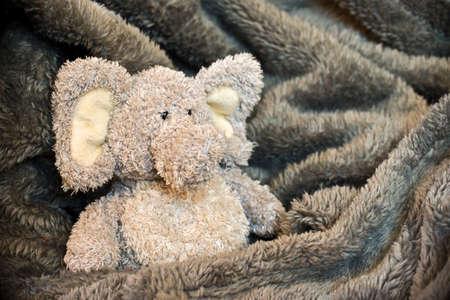 stuffed toys: Stuffed fluffy animal in a soft blanket