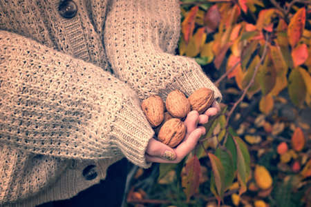 Girl with woolen sweater holding wallnuts in her hands, vintage process photo