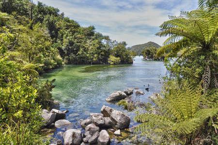 tasman: Abel Tasman natural park, South island, New Zealand Stock Photo