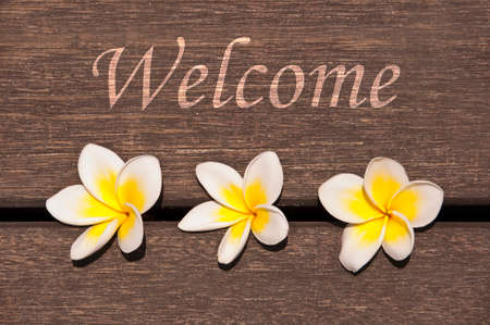 exotism: Welcome sign, wood and plumeria flowers