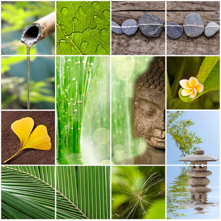 Green zen asia collage Фото со стока