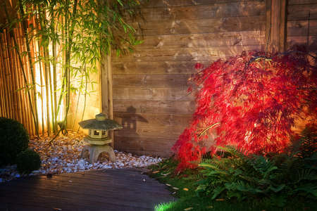 Japanese stone lantern and red maple tree in a zen garden lightened by spot lights at night