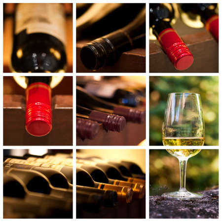 wineyard: Oenology and wine collage