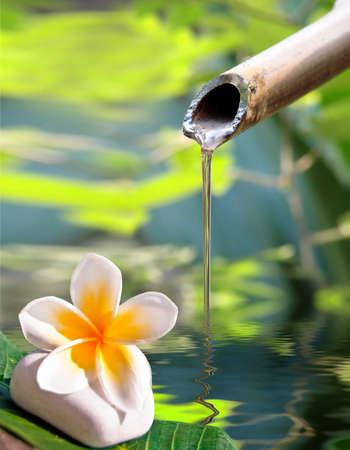 Bamboo fountain and frangipani flower
