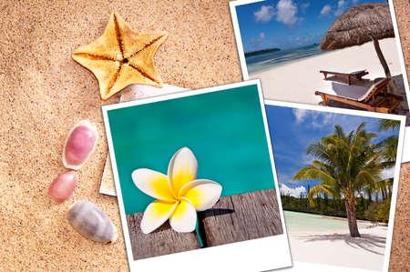 season photos: Beach instant photos on sand ans seashells background