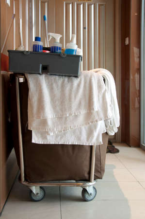 janitor: Professional house cleaning janitor cart