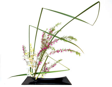 Japanese style flower arrangement ikebana isolated on white background Stock Photo