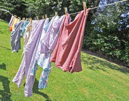 hanging on: Laundry hanging in a garden