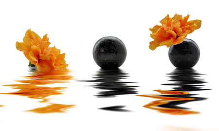mindfulness: Orange hibiscus and reflections Stock Photo