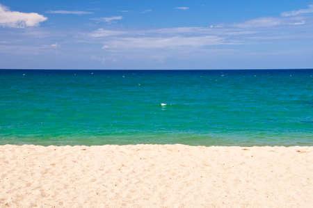 beach landscape: Abstract beach landscape, New Caledonia