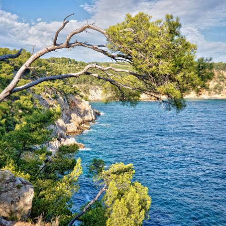 inlet bay: Calanque between Cassis and Marseille, France