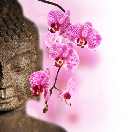 buddha face: Close up of Buddha head and pink orchid Stock Photo