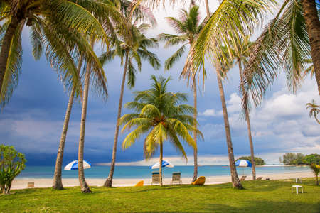 beach holiday: Tropical beach with palm trees dramatic sky with dark clouds Stock Photo