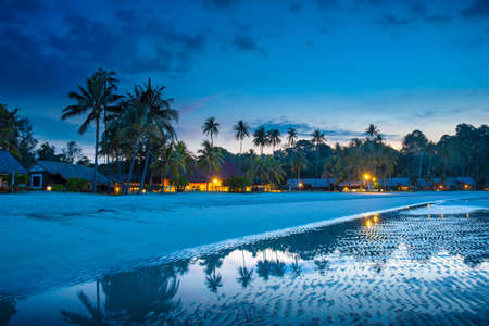 Tropical beach with palm trees and resort lights at night low tide