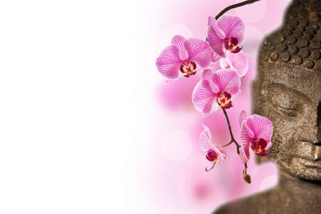 Stone Buddha face and pink orchid close-up with white copy space photo