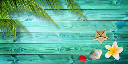 background summer: Summer background with palm trees and sea shells Stock Photo