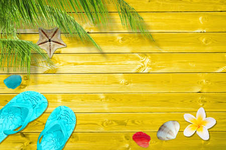 sandal tree: Summer background with palm trees, flip flops and sea shells