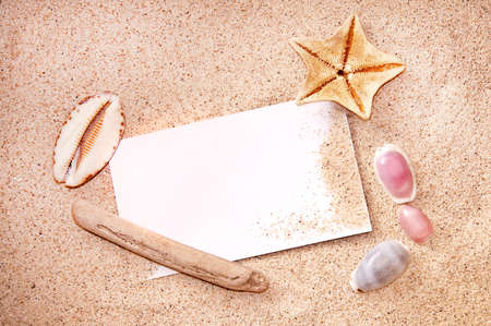 sandy beach: Blank paper on white beach sand, starfish and shells