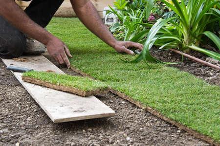 paysagiste: Installation de rouleaux d'herbe dans un jardin Banque d'images