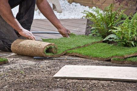 Installing rolls of grass in a garden Stockfoto