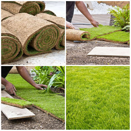 paysagiste: Étapes de l'installation des rouleaux d'herbe dans un jardin, collage