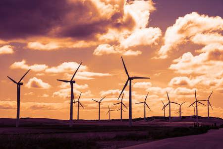 turbina: Campo de la turbina de viento en la puesta del sol, cielo dramático Foto de archivo