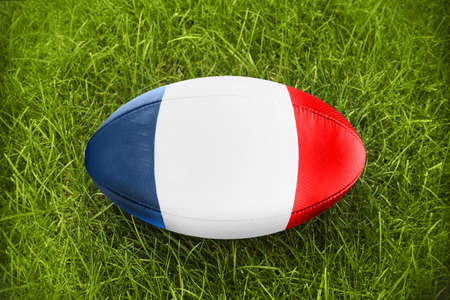 worldcup: Rugby ball blue white red in the grass