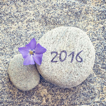 balanced rocks: 2016 written on a stone background with blue periwinkle flower