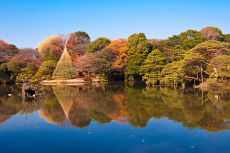 fall landscape: Rikugien garden, Tokyo, Japan