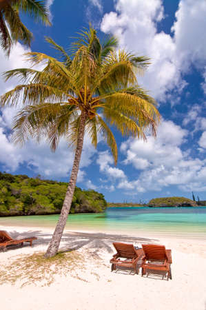 new caledonia: Loungers under a palm tree on a tropical beach, Isle od Pines, New Caledonia Stock Photo