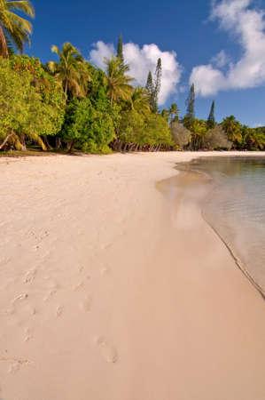 new caledonia: Tropical beach, Isle of Pines, New Caledonia Stock Photo