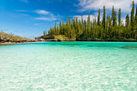 new caledonia: Natural pool of Oro Bay, Isle of Pines, New Caledonia Stock Photo